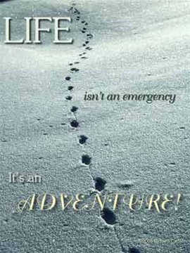 Life is an adventure