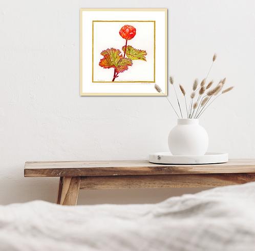 Cloudberry- Autumn is Coming by Iwona W. Zulawska
