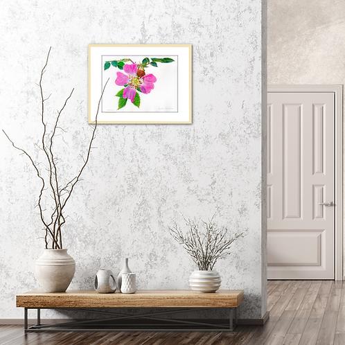Wild Rose– Pink Fragrance by Iwona W. Zulawska