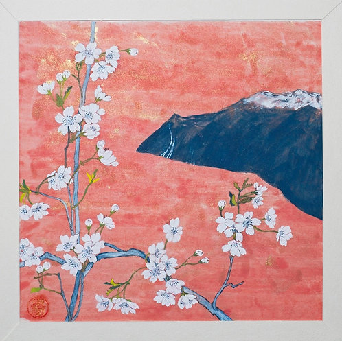 Flora in Norway-Landscape with Cherry Blossoms#1