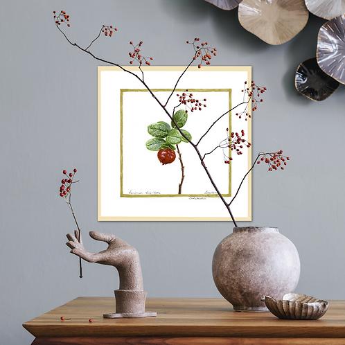 Ligonberry – Forest Red Beads by Iwona W. Zulawska