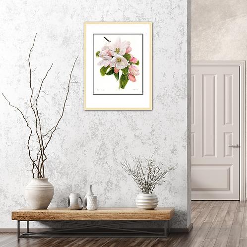Apple Blossom –Spring Potential by Iwona W. Zulawska