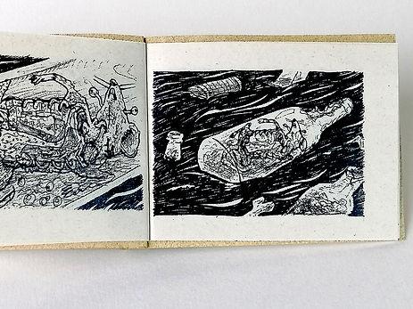 alcantarilla leandro lince (3).jpg