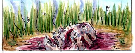 guaruguao detalle leandro lince  (2).jpg