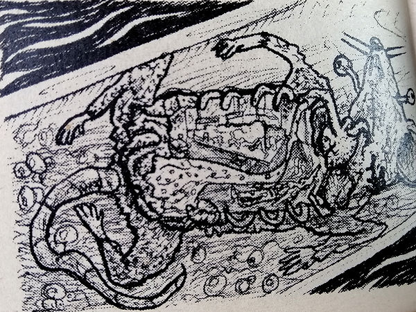 alcantarilla leandro lince (1).jpg