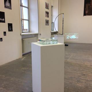 Gruppenausstellung Fotoklasse Akademie der Bildenden Künste München, 2019