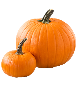 pumpkin_png-removebg-preview.png