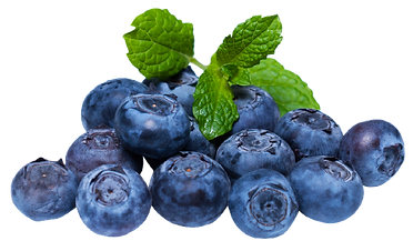 blueberry_png-removebg-preview.png