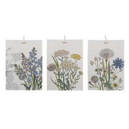 Botanisches Abtrocknungs-Tuch
