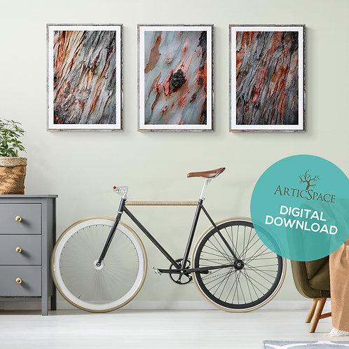 Arte decorativo abstracto (3 piezas): Susurro, Nettare, Cascata