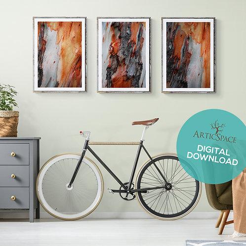 Arte decorativo abstracto (3 piezas): Equilibrium, Profundo, Alterno