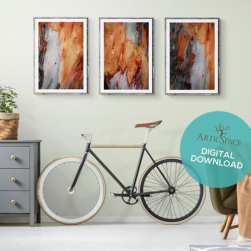 Arte decorativo abstracto (3 piezas): Equilibrium, Aurora, Alterno