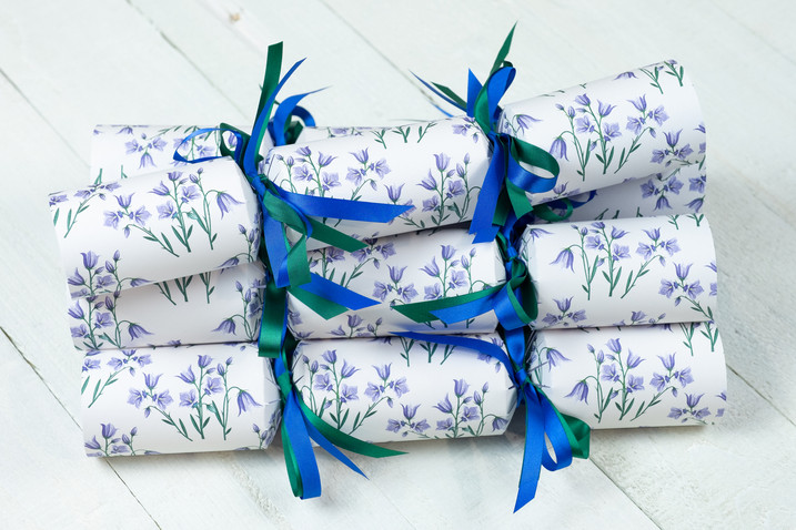 Bluebell Crackers