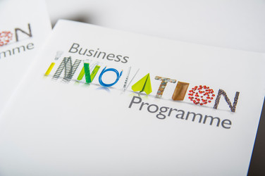 Business Innovation Programme Branding for Birmingham City Council