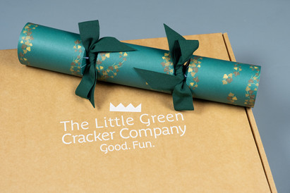 THE LITTLE GREEN CRACKER COMPANY