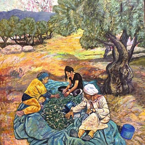 Olive Harvest #2
