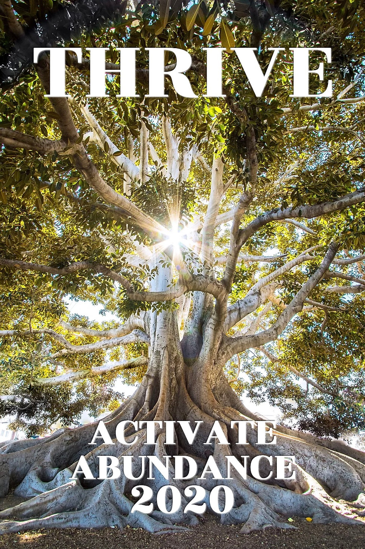 Activate Abundance 2020 Thrive Poster.jp