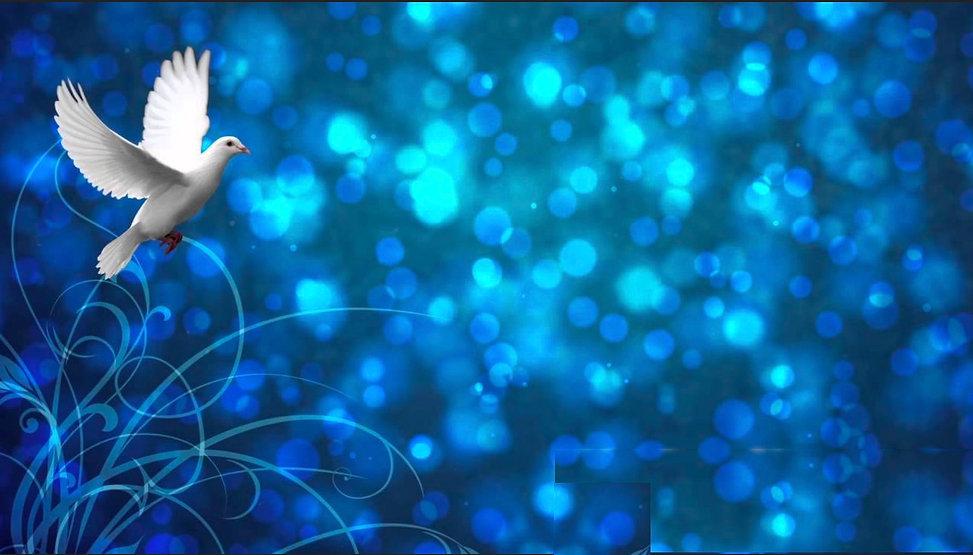 Peace Love Light Holydays.jpg