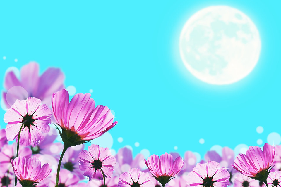 flowers field on blur Moon background, E