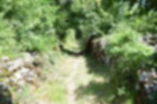 Pompon Gallische weg 1k.jpg