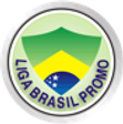 ligabrasilpromo.png