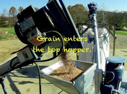 Grain In Hopper