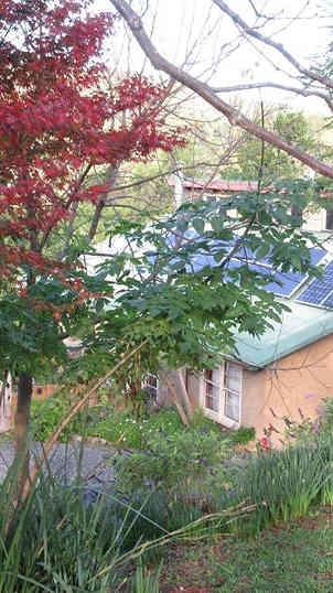 Owner built, off grid home