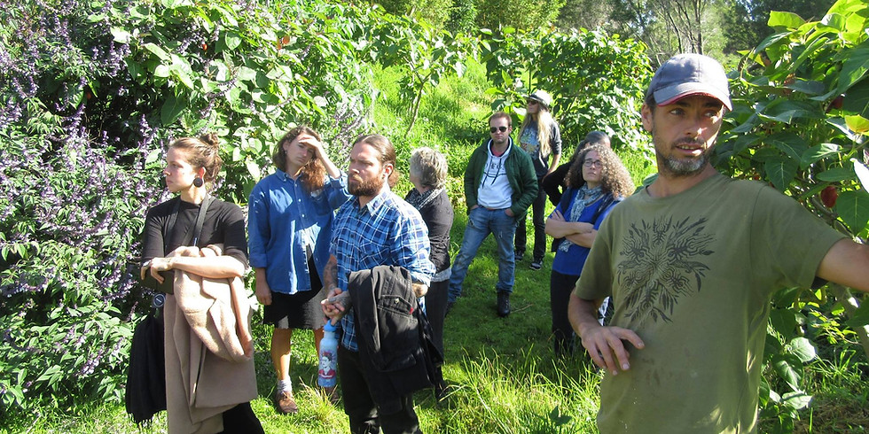 Permaculture Garden Open Days @Brogo