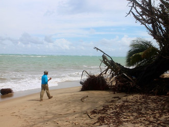 """PUERTO RICO: A """"CANARY IN THE COAL MINE"""" FOR CLIMATE CHANGE"""