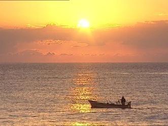 DRNA establece récord reciente en cantidad de licencias de pesca comercial