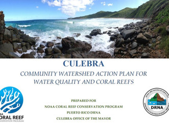 NOAA Helps Protect Reefs That Boost Resilience and the Economy