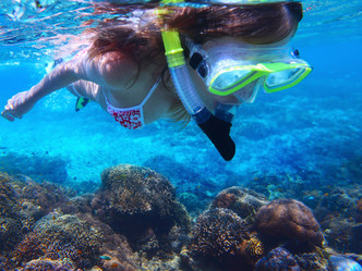 PLEASE, DON'T TOUCH: SNORKELERS HARM CORALS MORE THAN THEY THINK, AWARENESS CAN HELP