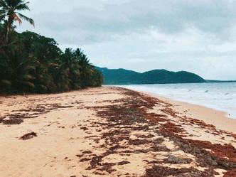 Las playas no son nuestras