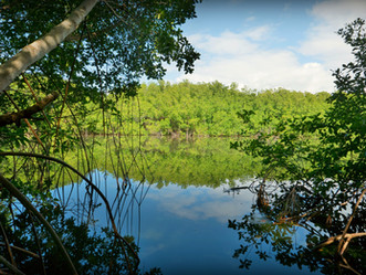 Recursos Naturales invita a celebrar el Día Nacional del Estuario