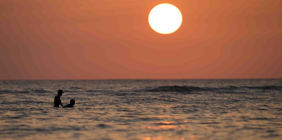 Aunque el aumento de la temperatura del mar es el elemento de incidencia más importante, el cambio climático provoca que los océanos sean más ácidos y tengan menos oxígeno. (AP / Carolyn Kaster)