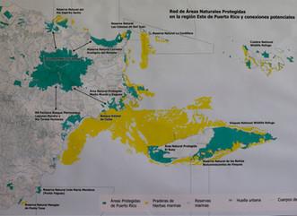 Comienza diseño de vereda para interconectar El Yunque con áreas naturales protegidas y comunidades