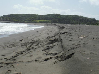 Las playas de Puerto Rico perdieron elevación tras el paso de María