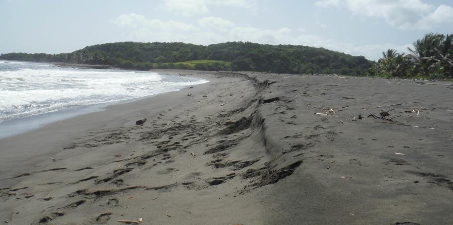 El 90% de las playas visitadas por los voluntarios de la Red de Playas de Puerto Rico y el Caribe mostró pérdida de elevación (se aplanaron) luego del huracán María. En la foto, la playa de La Boca, en Barceloneta. (Suministrada)
