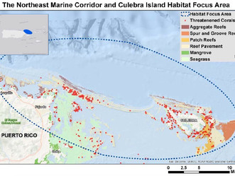 El Corredor Marino del Noreste y la Isla de Culebra Área de Enfoque de Hábitat de la NOAA en Puerto