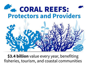 Coral Reefs Fast Facts