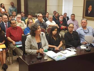 DRNA no favorece proyecto que crearía zonificación especial para casetas y muelles sobre el agua y t