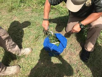 Cuerpo de Vigilantes detiene pesca ilegal en reserva natural