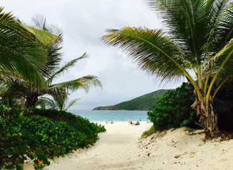 Visit to Culebra by a Canadian environmental biologist