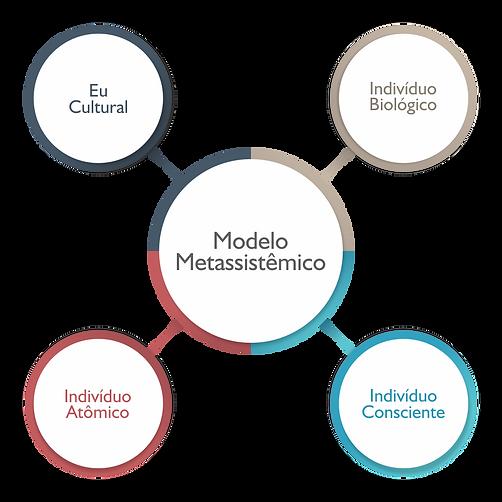 Modelo Metassistêmico | Nortus