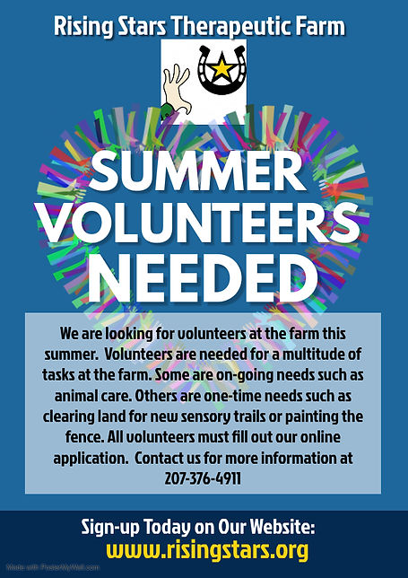 Volunteers Needed Flyer - Made with Post