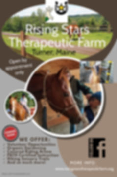 Rising Stars Farm Flyer - Made with Post