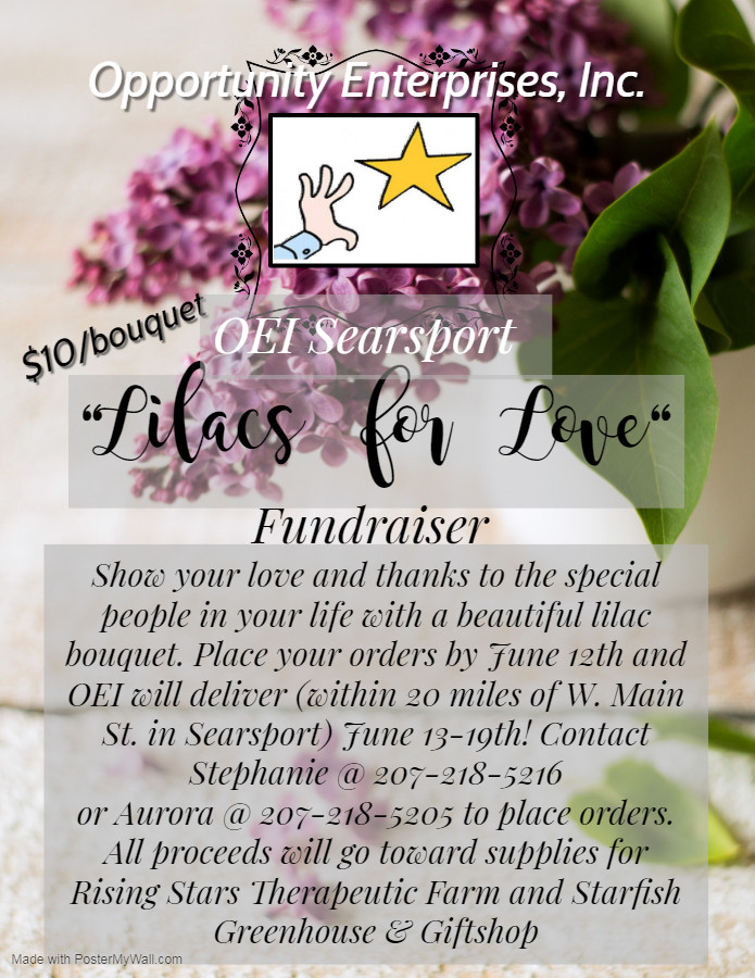 Lilacs for Love Fundraiser - Made with P