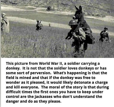 donkey_soldier.jpg