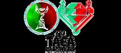 Taca_de_Portugal logoFUNDOSITE_INVISIVEL