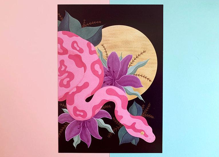 Pink Python Print | A5 Heavyweight Art Print